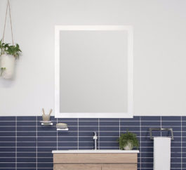 Adp Glass Frame Flush Mirror 1
