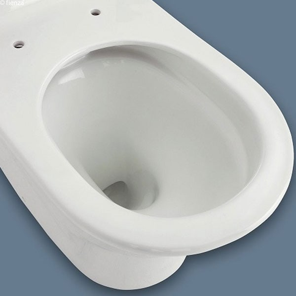 Fienza Luciana Rimless Toilet Suite 02