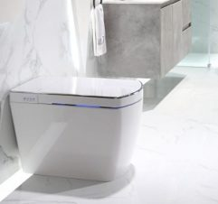 Lafeme Smart Toilet Small